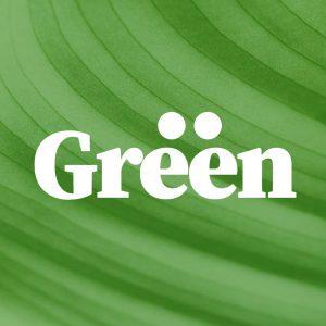 brand logo discord avatar example