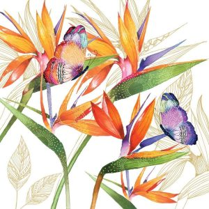 ppd servetten parrot flower