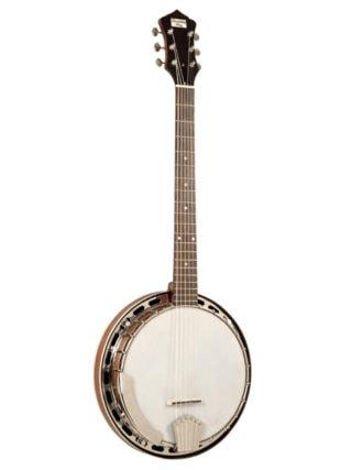 recording king six string banjo madison g25