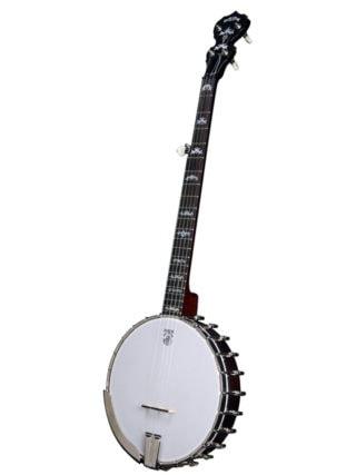 deering eagle 2 openback 5 string banjo