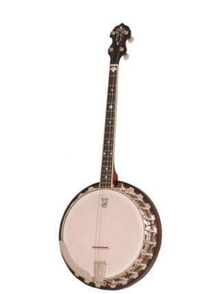 vega professional 19-fret tenor banjo
