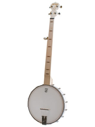 goodtime fretless scooped openback banjo