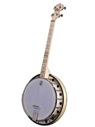 goodtime 2 dropkick murphys 19 fret tenor banjo