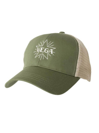 vega banjo vintage baseball hat