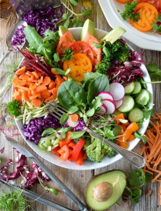 Dr Gemma Newman talks to Vlogger Mike Ross about the benefits of plant based nutrition