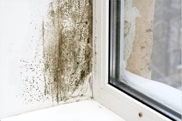 Indoor Air Pollution: Common Sources, Negative Consequences & Simple Solutions