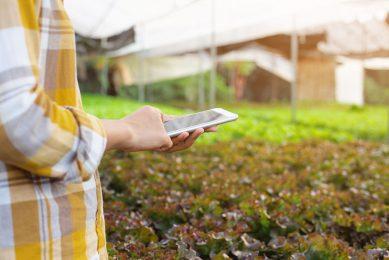 Social considerations of on-farm innovation