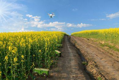 Spot farming uses mini robots at plant level