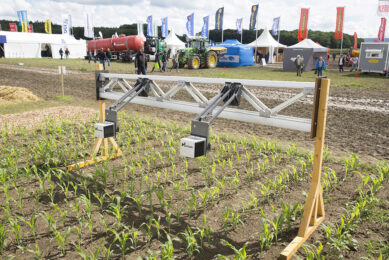 Agricon developed a sensor with which spot spraying in corn is possible. Technologies like these could help prevent significant yield losses in corn. - Photo: Koos Groenewold