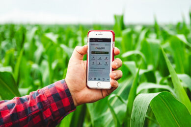 For maximum effectiveness of IPM, it is important to use accurate monitoring tools. - Photo: Farmbox