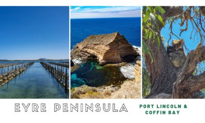 Eyre peninsula port lincoln coffin bay cover image