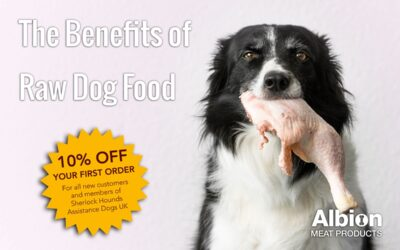 The Benefits Of Raw Dog Food