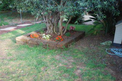 בריקים אבני חיפוי לגינה