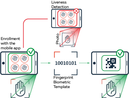 """Graphic of process of digital self-onboarding citizens to provide personal data in a fast and secure way and receive their """"Digital immunity passport"""""""