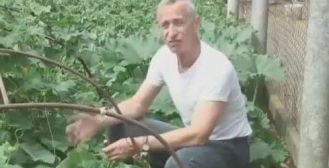 Русские приколы, подборка приколов 2016