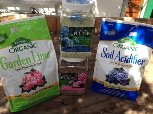 Products to regulate the color of your hydrangeas/