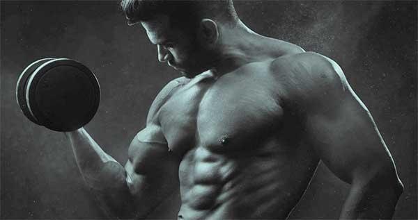 Collagen Supplements Build Muscle