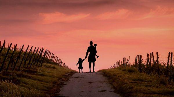 Effects Of Divorce In Children