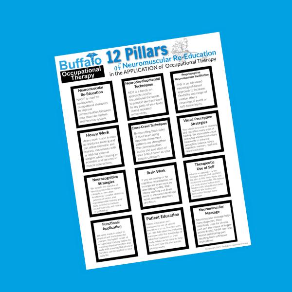 12 Pillars of Neuromuscular Re-Education - BOT PORTAL thumbnail copy