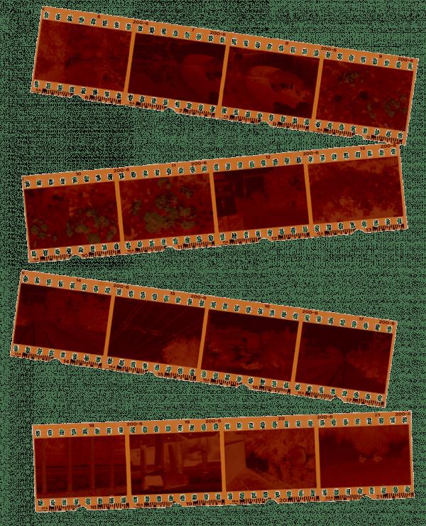 35mm neg scanning