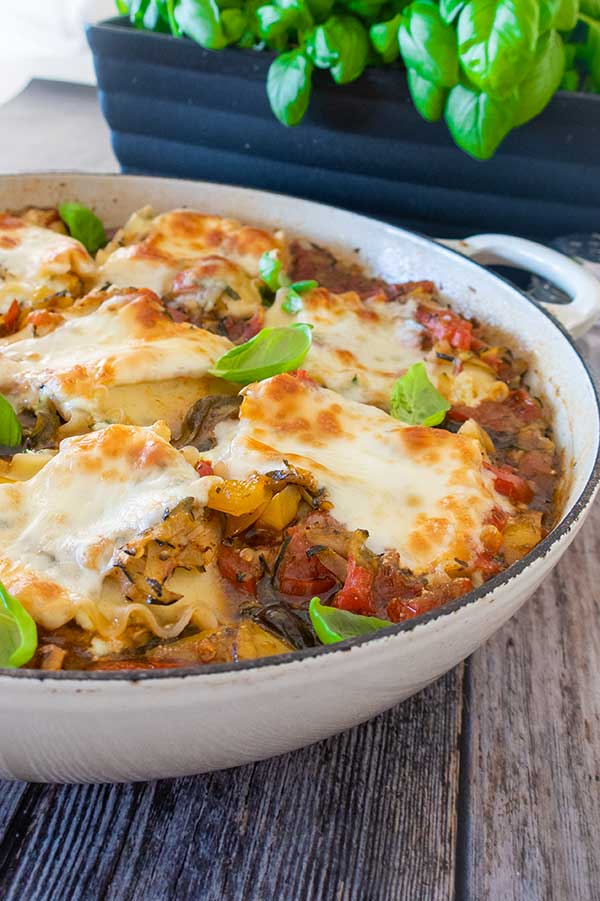 cheese lasagna roll ups, gluten free