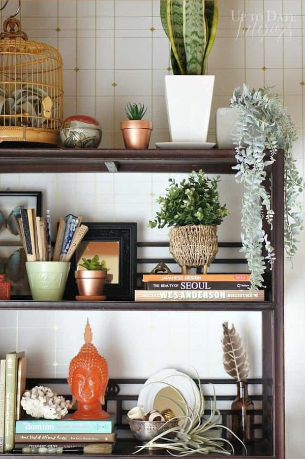 bookcase close up with plants and eclectic and curated items