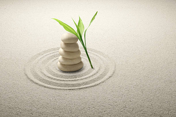 balance of life, balance, leaf, bamboo, balanced life\