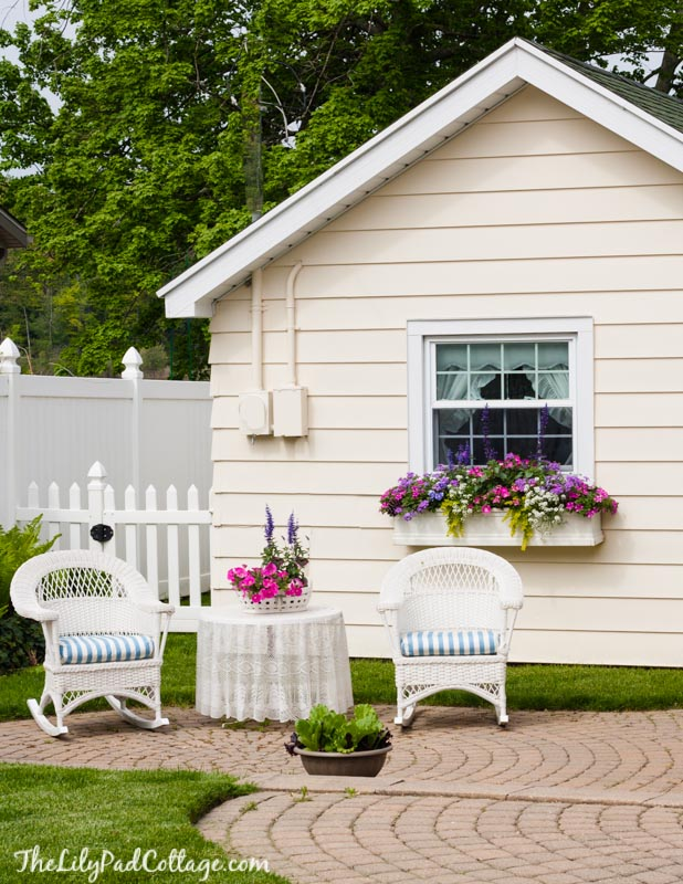 5 tips for Gorgeous Window Boxes
