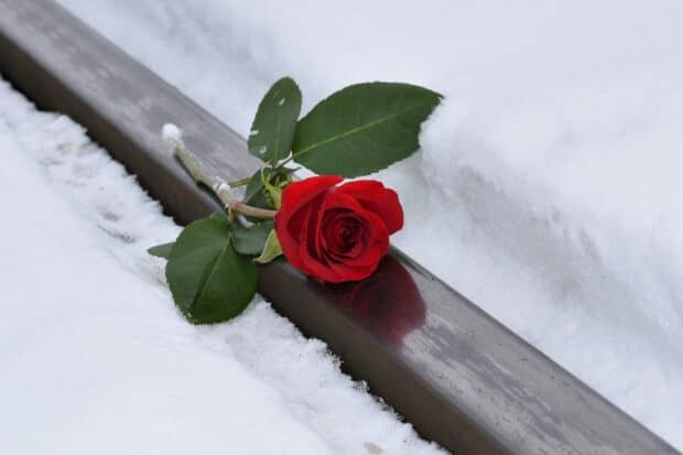 Nutids-r | Kondolere eller kondolerer | Your Missing Link