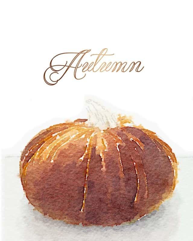 pumpkin-autumn-8x10