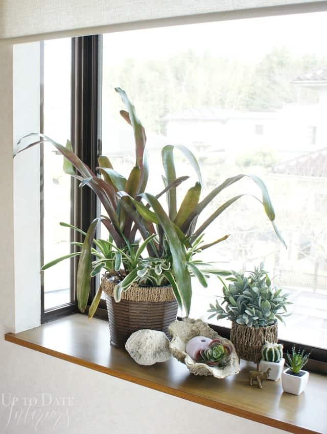 garden window ideas on a budget