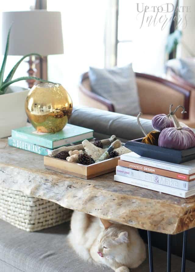 velvet pumpkin decor ideas on a sofa table for fall decor