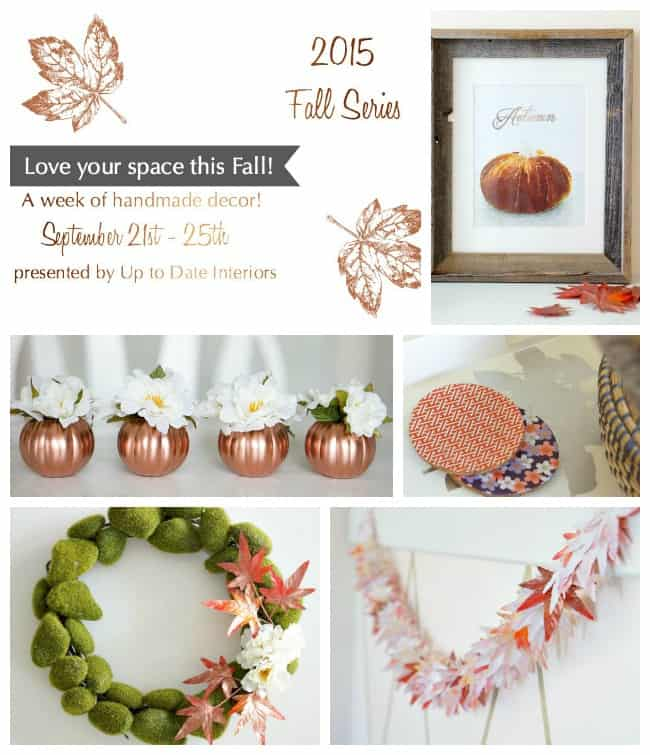 fall-series-collage