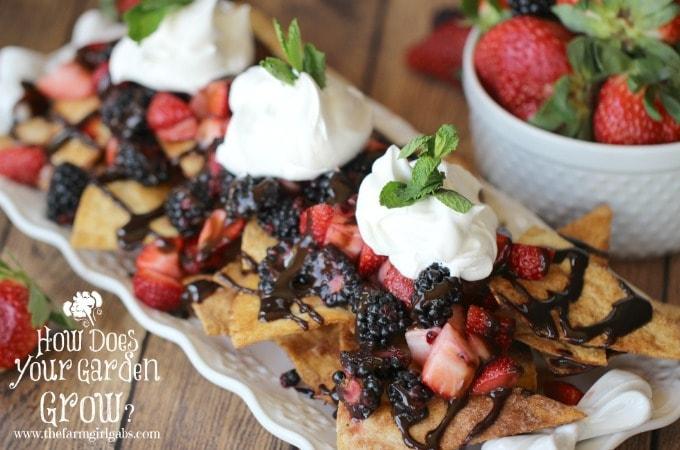 Very Berry Dessert Nachos - Feature 2