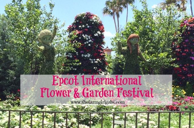 Reflections From The Epcot International Flower & Garden Festival!