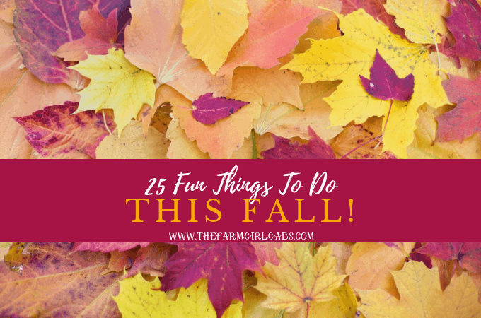25 Fun Things To Do This Fall!