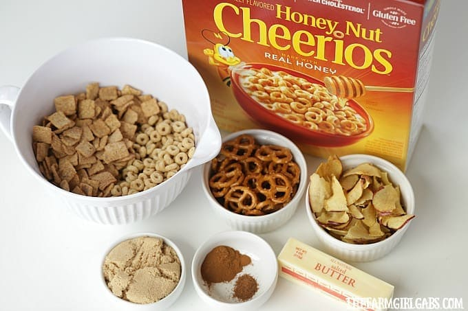 Celebrate the flavors of fall with this yummy Honey Nut Cheerios™ Apple Pie Snack Mix. It's the perfect snack for your kids' school lunch.