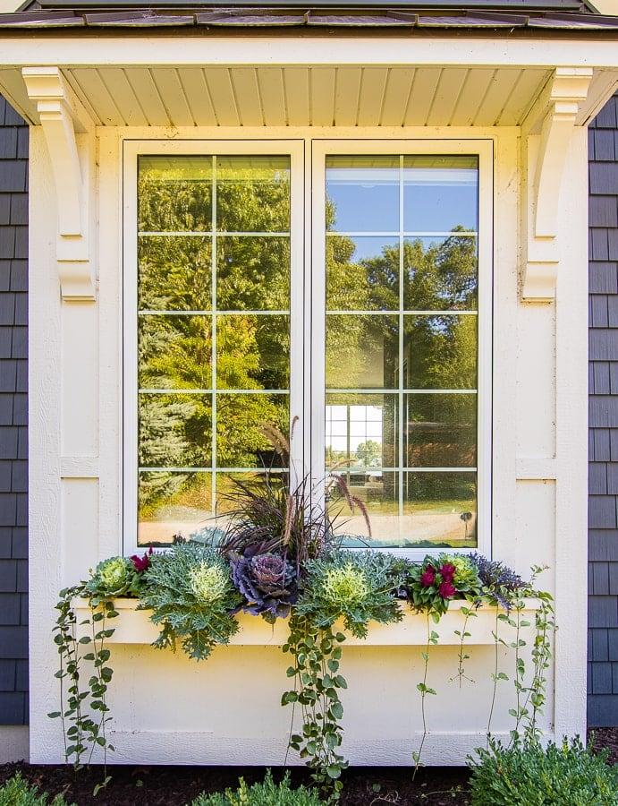 Fall cabbage and kale window box idea Flower box ideas