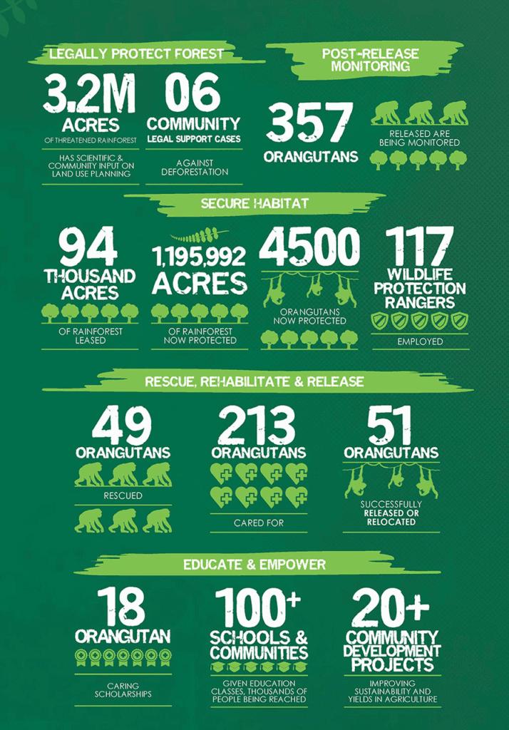 The Orangutan Project Achievements