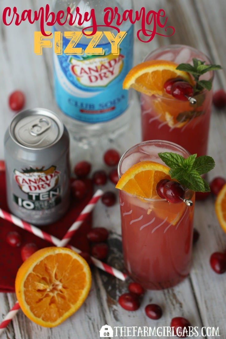 This Cranberry Orange Fizzy is the perfect non-alcoholic drink for young and old to enjoy during the Christmas season. [Ad] #BrighTENtheSeason @Target