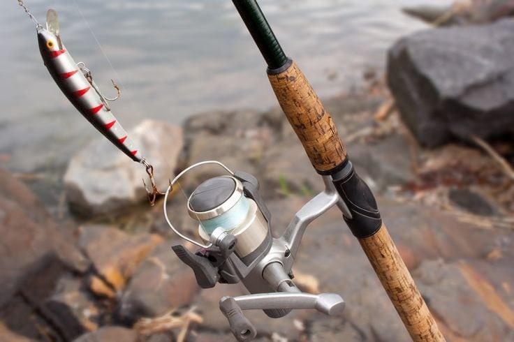 Best Inshore Fishing Reel