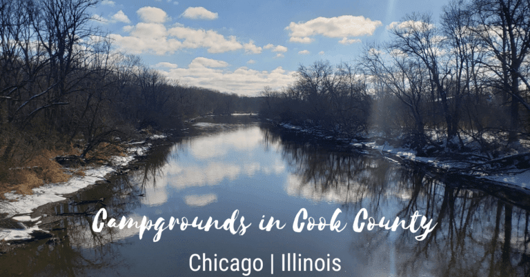 camping in cook county featured image