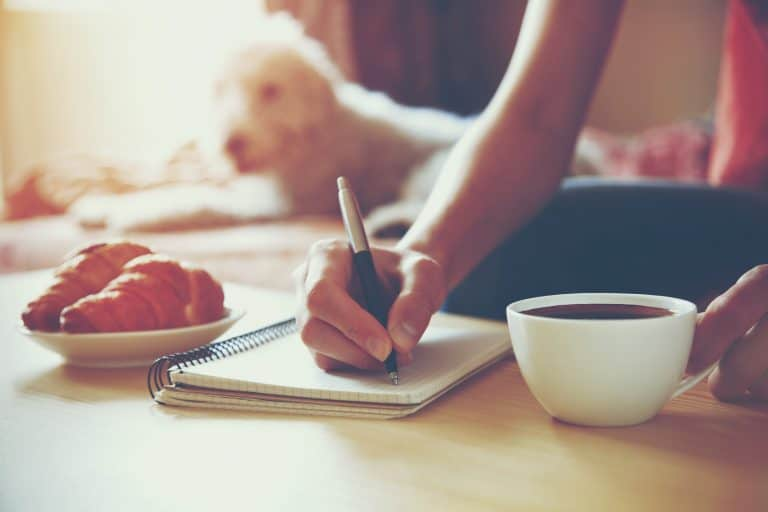 Read more about the article Journal de gratitude