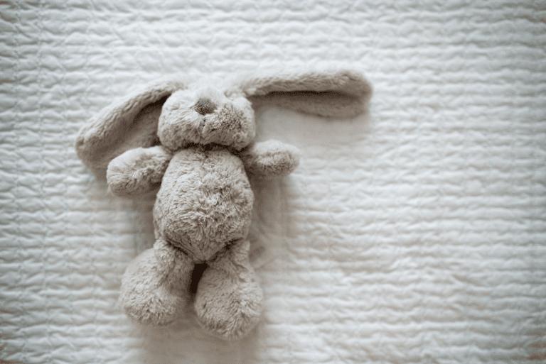 Read more about the article La compassion d'un enfant