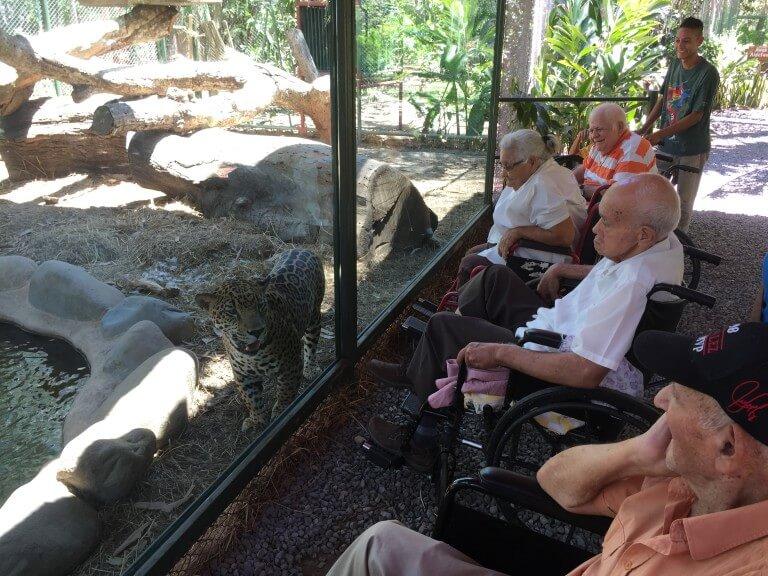 Lee más sobre el artículo Visita de Adultos mayores .