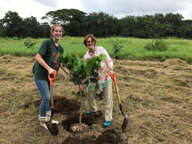 Lee más sobre el artículo Festejando el Día del árbol en NATUWA Costa Rica