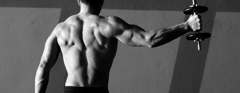Muskelmasse zunehmen