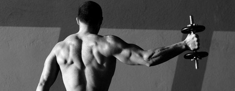 Weight Gainer helfen beim Muskelaufbau