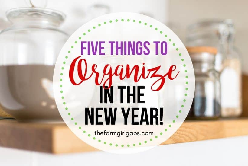 5 Things To Organize In The New Year (Free Printable)