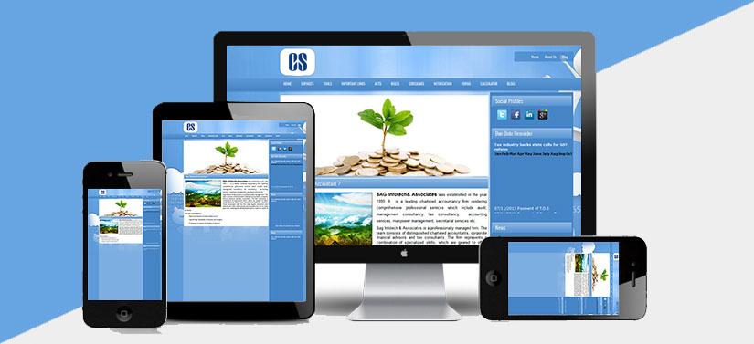 CS Website development